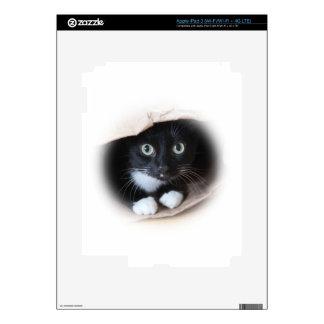 Cat in a bag skin for iPad 3