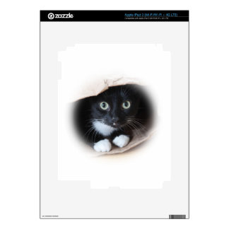 Cat in a bag skin for iPad 3
