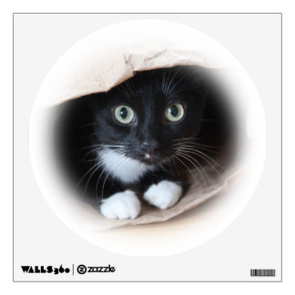 Cat in a bag wall skins