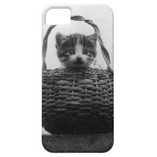 Cat in a Basket Vintage Photo iPhone SE/5/5s Case