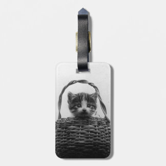 Cat in a Basket Vintage Photo Luggage Tag