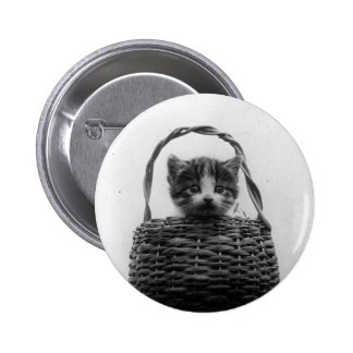Cat in a Basket Vintage Photo Pinback Button