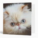 Cat In A Box Binder