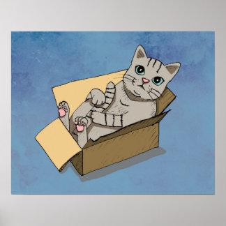 Cat in a Cardboard Box Poster