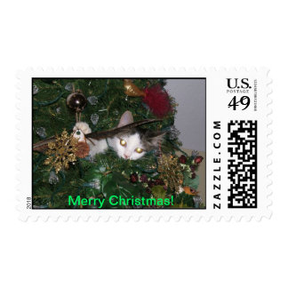 Cat in a Christmas Tree take 2 Stamps