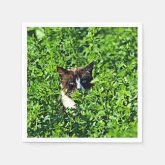Cat in a Field Standard Cocktail Napkin