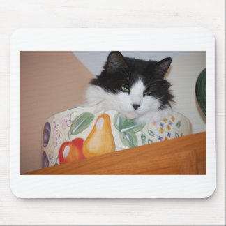 Cat in a Fruit Bowl Mouse Pad