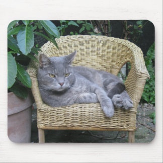Cat in a Kid's Chair Mouse Pad