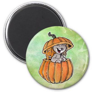 Cat in a Pumpkin Magnet