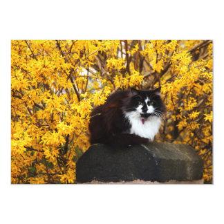 Cat in Autumn Invitation