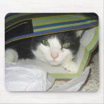 Cat-in-bag Mousepads