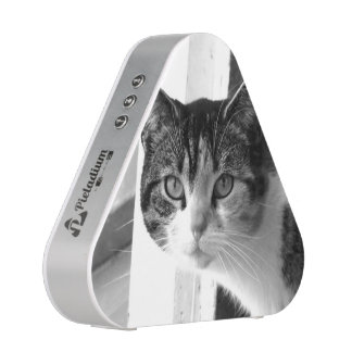 Cat in black and white bluetooth speaker
