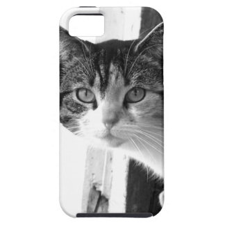 Cat in black and white iPhone SE/5/5s case