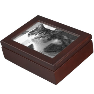 Cat in black and white keepsake box