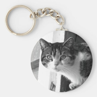 Cat in Black and White keychain