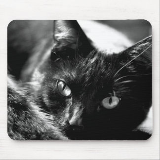 Cat in Black and White Mouse Pad