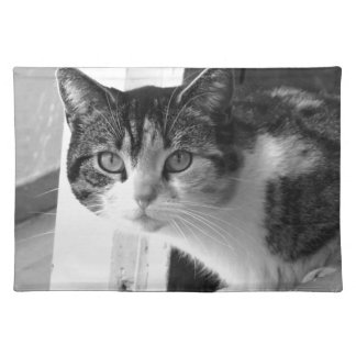 Cat in black and white placemats