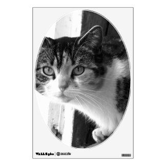 Cat in black and white wall decal