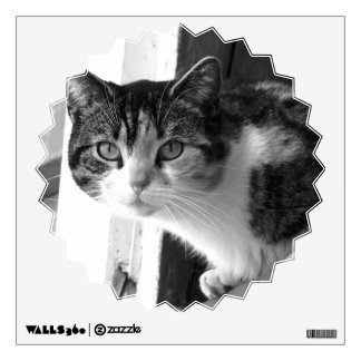 Cat in black and white wall sticker