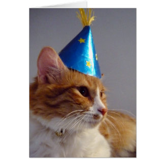 Cat in Blue Party Hat Blank Note Card