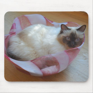 Cat in Bowl - Mouse Pad