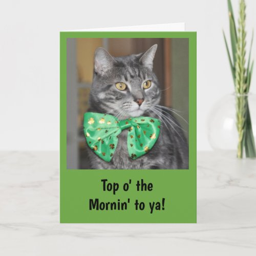 Cat in bowtie for St Patricks Day Card