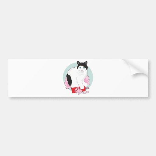 Cat in Box Bumper Sticker