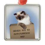 Cat in Box Christmas Tree Ornaments