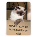 Cat in Box Custom Invitations