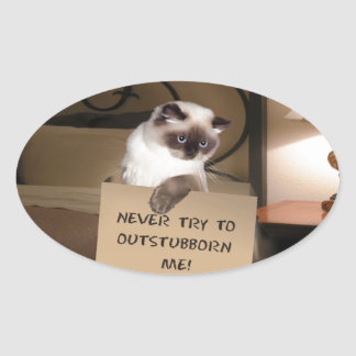 Cat in Box Himalayan Oval Sticker