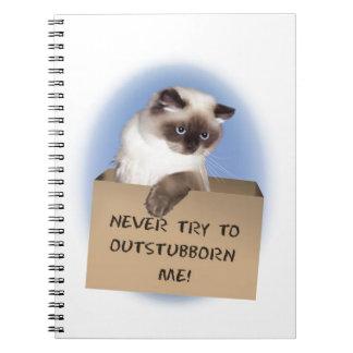 Cat in Box Notebooks