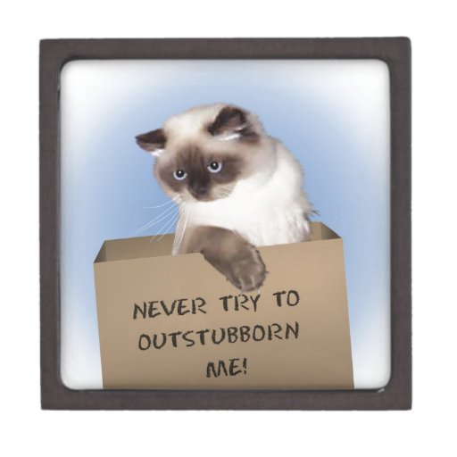 Cat in Box Premium Gift Box