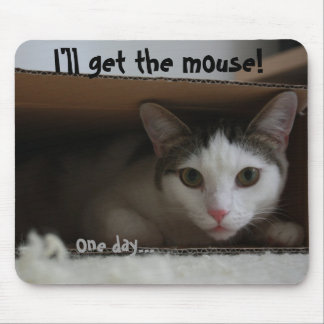 Cat in box tomcat hiding face eyes mouse pad
