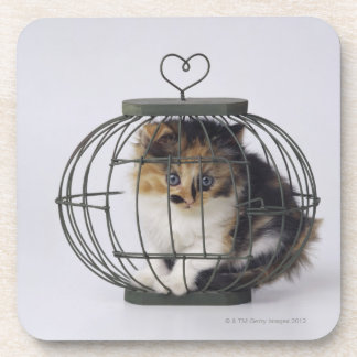 Cat in cage coaster