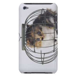 Cat in cage iPod touch Case-Mate case