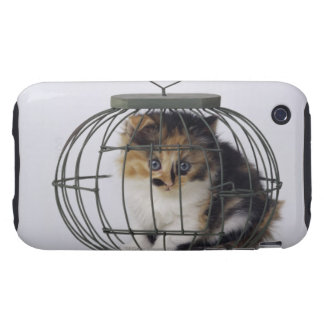 Cat in cage tough iPhone 3 cover