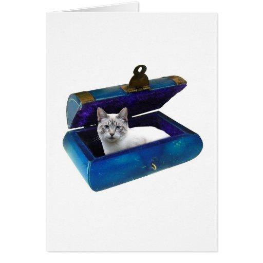 Cat in Chest Card