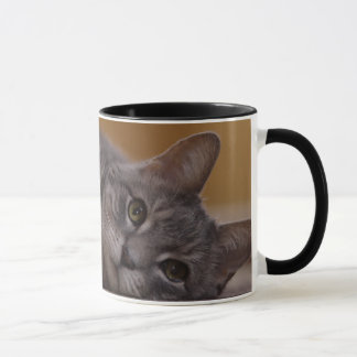 Cat In Cute Pose Lying on the Floor Mug