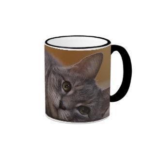 Cat In Cute Pose Lying on the Floor Ringer Mug