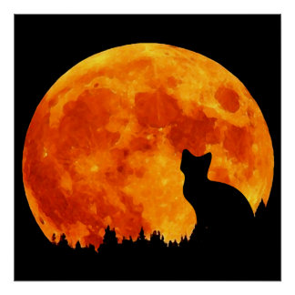 Cat in full orange Moon Poster