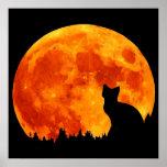 Cat in full orange Moon Print