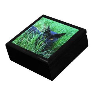 Cat-in-Grass Jewelry Box