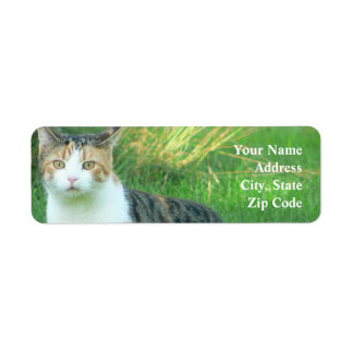 Cat in grass label