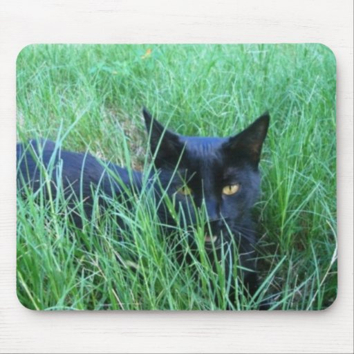 Cat in Grass Mouse Pads