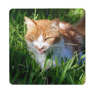 Cat in grass puzzle coaster