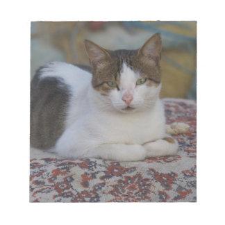 Cat in Marina of Kusadasi along the Aegean Sea, Notepad