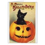 Cat In Pumpkin Greeting Cards