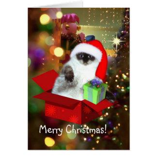 Cat in Santa Hat Card