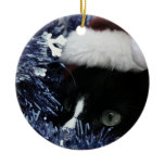 Cat in santa hat hiding in blue tinsel peering out ornaments