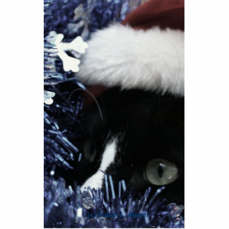 Cat in santa hat hiding in blue tinsel peering out cut outs
